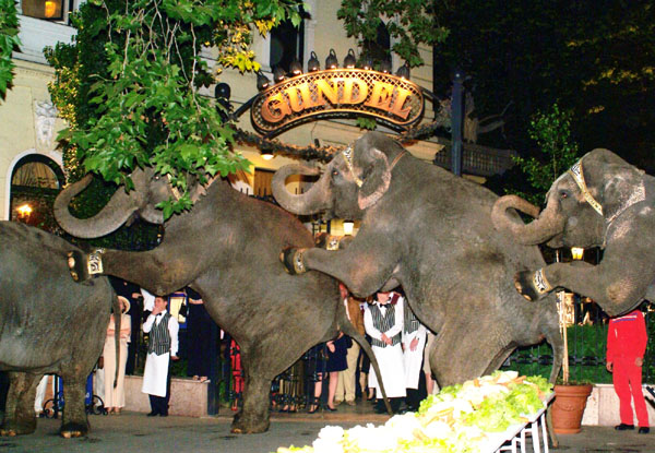 Gundel Restaurant Budapest Allbudapesthotels Com